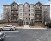14130 Sheffield Drive Unit 303, Homer Glen image