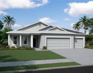 11616 Tetrafin Drive Unit 1021, Riverview image