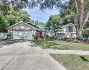 1523 Sand Hollow Court, Palm Harbor image