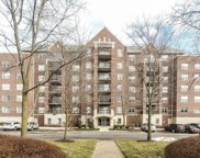 410 West Mahogany Court Unit 301, Palatine image