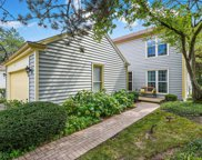 12 The Court Of Stone Creek, Northbrook image