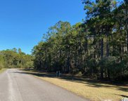 420 Red Wolf Trail, Myrtle Beach image
