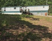 625 Pine Rd, Pell City image