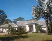 3510 Tasselflower Ct, Bonita Springs image