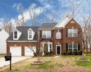 10917 Chastain Parc  Drive, Charlotte image