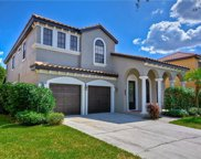 20345 Chestnut Grove Drive, Tampa image