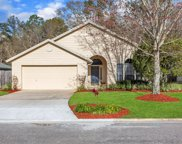 219 DOVER BLUFF DR, Orange Park image