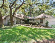 8 Bent Tree Lane, Hilton Head Island image