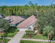 10409 Greenmont Drive, Tampa image