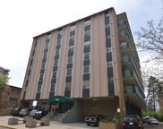 1265 Race Street Unit 306, Denver image