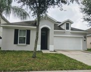 7937 Camden Woods Drive, Tampa image