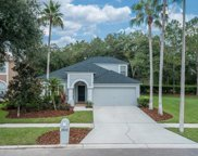 19005 Chemille Drive, Lutz image