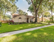 3812 Cliffdale Drive, Valrico image