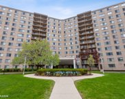 6933 N Kedzie Avenue Unit #312, Chicago image