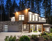 1510 Crystal Creek Drive, Port Moody image