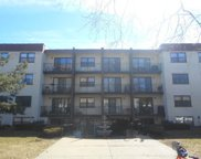 1629 W Sherwin Avenue Unit #206, Chicago image