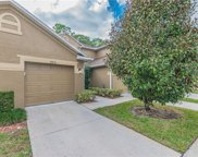 18856 Duquesne Drive, Tampa image