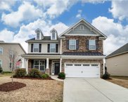 222 Annatto  Way, Tega Cay image