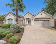 14231 Savannah Pass, San Antonio image