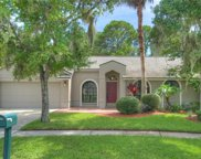 15004 Rocky Ledge Drive, Tampa image