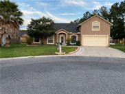 1251 Loquat Court, Green Cove Springs image