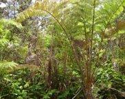 ALANUI IIWI, Big Island image