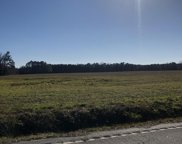 710 Mitchell Swamp Rd., Loris image