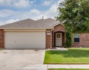 14128 Gold Seeker Way, Fort Worth image