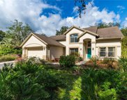 16102 Camelot Court, Tampa image
