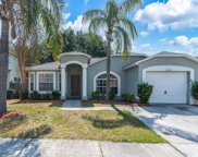 12906 Brant Tree Drive, Riverview image