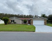 769 E Birchwood Circle, Kissimmee image