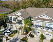12419 Chase Grove Drive, Tampa image