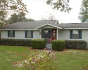 15519 40TH ST, Live Oak image