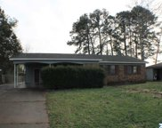 507 Briarwood Drive, Decatur image