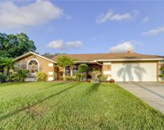 1855 Stable Trail, Palm Harbor image
