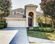 16316 Dovetail Way, Spring Hill image