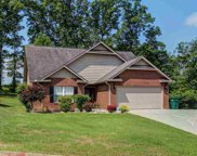 2005 Infinity Lane, Sevierville image