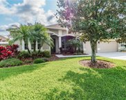 26801 Shoregrass Drive, Wesley Chapel image