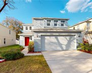 11228 Black Forest Trail, Riverview image