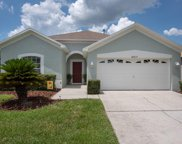 14317 Moon Flower Drive, Tampa image