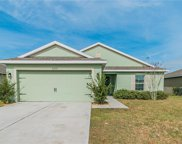30919 Water Lily Drive, Brooksville image
