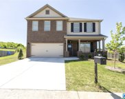 305 Creekside Cir, Pelham image