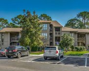407 Indian Wells Ct. Unit #407, Murrells Inlet image