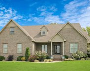 280 Homeplace Dr, Almo image