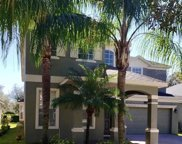 14338 Red Cardinal Court, Windermere image