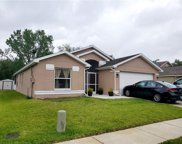 28445 Tall Grass Drive, Wesley Chapel image