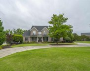 1075 Richard Franklin Road, Chapin image