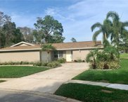 3553 Fairway Forest Drive, Palm Harbor image