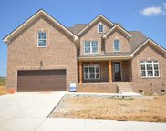 1015 Alpaca Drive (401), Spring Hill image