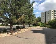 13800 E Marina Drive Unit 407, Aurora image